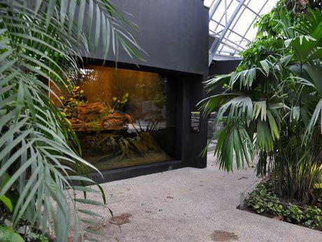 a coeur de chaux - parc zoologique paris