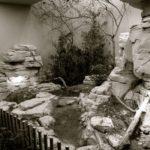 Chaux dans zoo